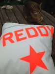 Personalised Name Cushions